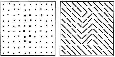 patterns that were generated at the cyclopean eye
